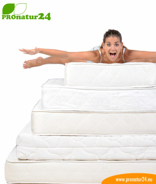Seminar on mattresses and healthy sleeping
