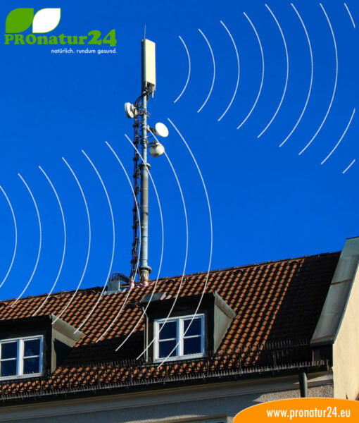 Seminar on LF and HF electrosmog from current and radio