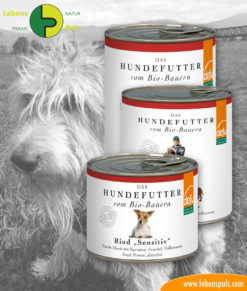 defu BIO dog food: wet food-beef