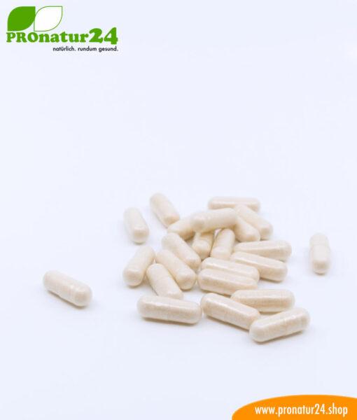 Lactoferrin, 120 mg, dietetic food